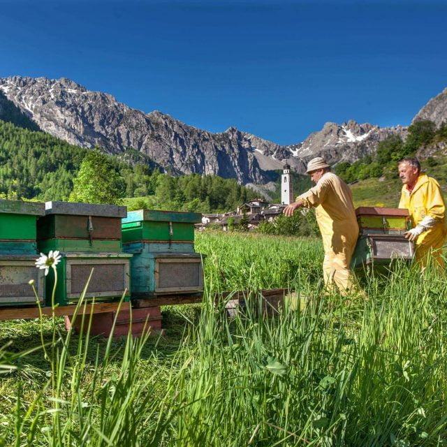 Una settimana dolcissima fino a domenica acquista il miele biologicohellip