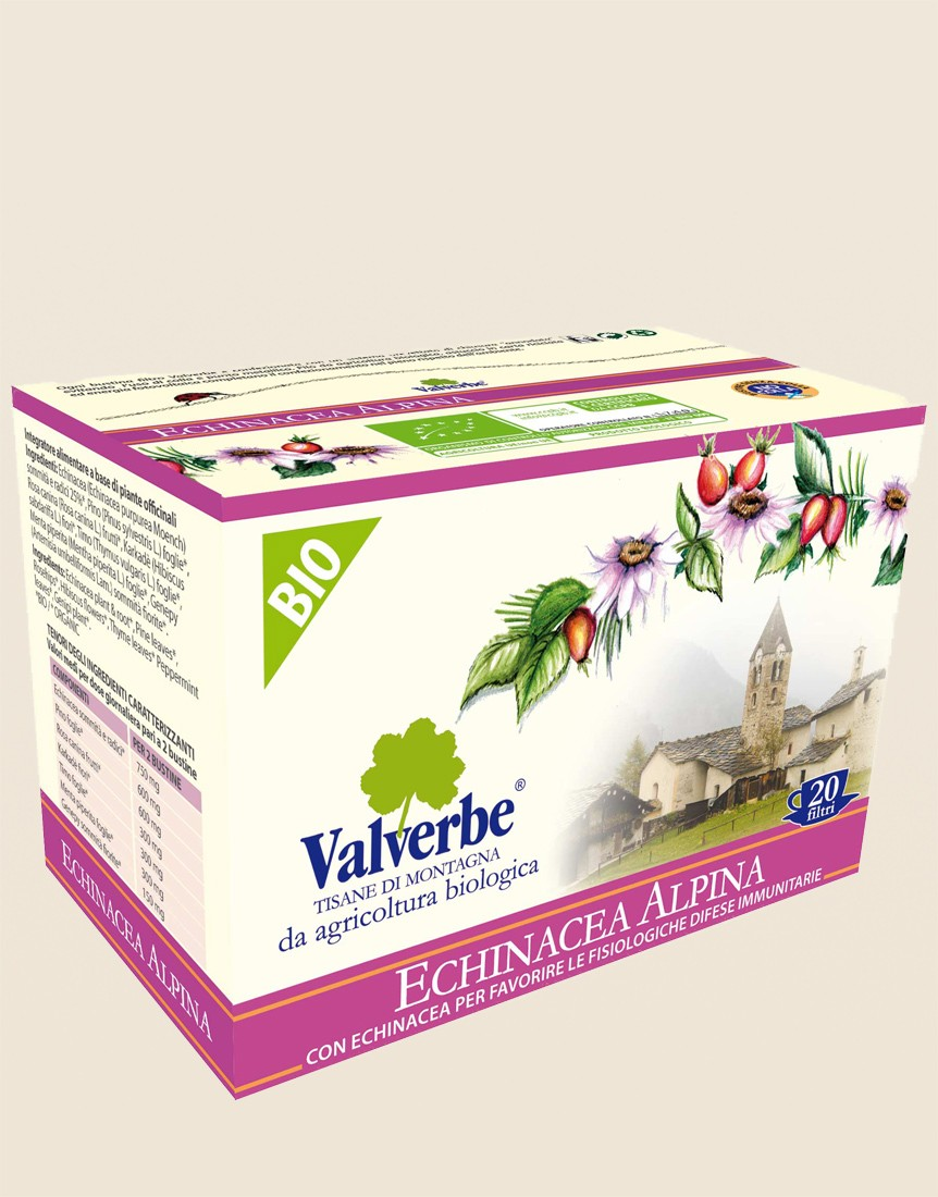 Organic Echinacea Alpina